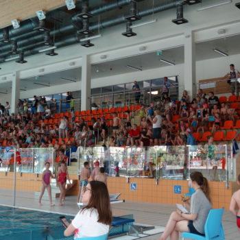 trybuna basen sportowy